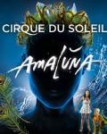 concert Amaluna (cirque Du Soleil)