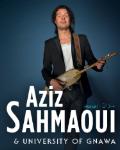 concert Aziz Sahmaoui