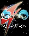 concert Bowie Forever