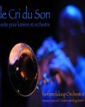 concert Fanfare Du Loup Orchestra (le Cri Du Son)