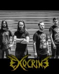 concert Exocrine
