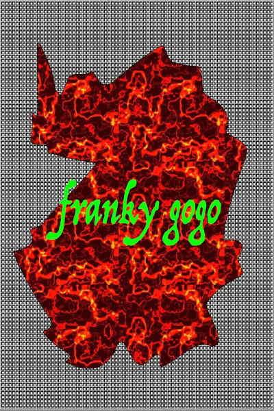 concert Franky Gogo