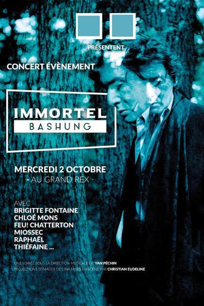 concert Immortel Bashung