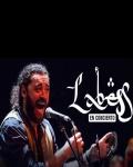 El Hogra - Labess