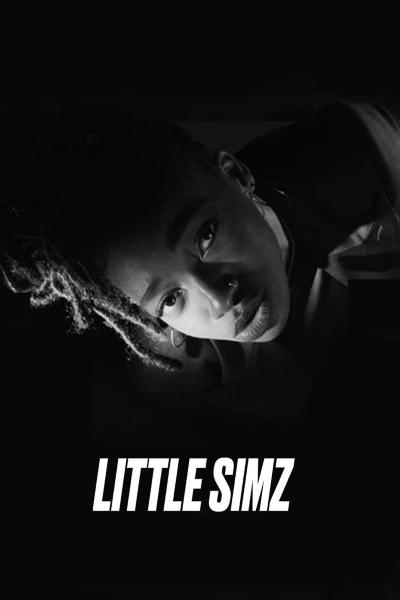 concert Little Simz