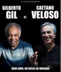 concert Gilberto Gil