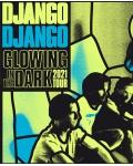 concert Django Django