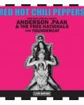 TOURNEE / The Red Hot Chili Peppers en tournée en France : revivez cinq lives marquants !