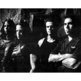 concert Danzig