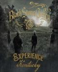concert Black Stone Cherry