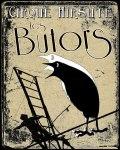 concert Les Butors (cirque Hirsute)
