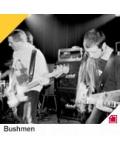 concert Bushmen