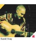 concert David Gray