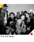 concert Flor Del Fango