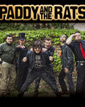 concert Paddy And The Rats