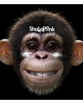 Sélection concerts du jour : Shaka Ponk, Nadeah, Eric Bibb...