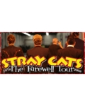 concert The Stray Cats