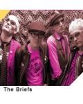 THE BRIEFS