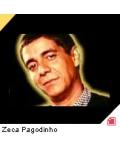 concert Zeca Pagodinho