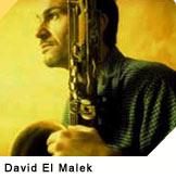 concert David El Malek