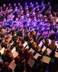 concert Les Fous Du Sax