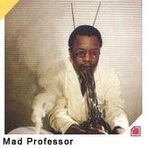 concert Mad Professor