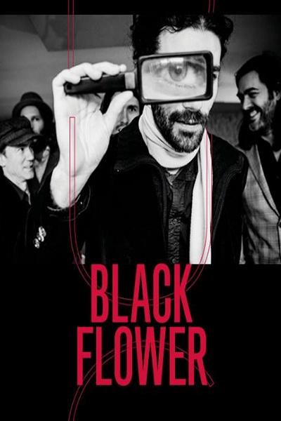 concert Black Flower