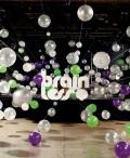 concert Brainless