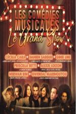 concert Les Comedies Musicales Le Grand Show