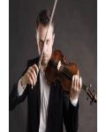 concert Boris Begelman