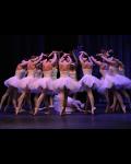 LE LAC DES CYGNES (Ballet de l'Opera national de Russe - Bulgarie)
