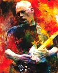 David Gilmour - Wish you were here - Live unplugged
