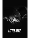 Little Simz vient mettre Paris à genoux avec son nouvel album !