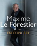 Sélection concerts du jour : Maxime Le Forestier, Stuck In The Sound...