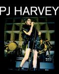ICONE / La britannique PJ Harvey en concert au Zénith de Paris ce vendredi !