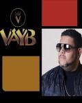 concert Vayb