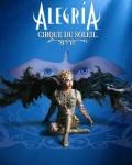 spectacle Ovo de Le Cirque Du Soleil