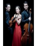 concert Trio Amatis
