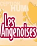 CENTRE CULTUREL LES ANGENOISES A BONCHAMP