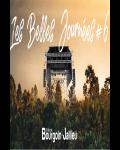 FESTIVAL / Mountain Men, Fishbach et Thomas Fersen à l'affiche de la 3ème édition des Belles Journées de Bourgoin Jallieu