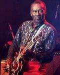 concert Chuck Berry