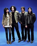 concert The Dead Weather