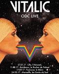 Vitalic - ODC live