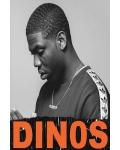 concert Dinos