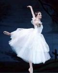 concert Ballet Opera National De Kiev