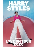 HARRY STYLES (ex-One Direction) en concert à l'AccorHotels Arena en mai 2020