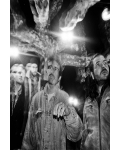 HARVEY RUSHMORE & THE OCTOPUS