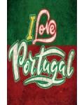 I Love Portugal, un concert à Paris La Défense Arena avec en tête d'affiche Tony Carreira