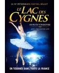LE LAC DES CYGNES (St Petersbourg Ballet Russes)