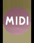 MIDI FESTIVAL A HYERES